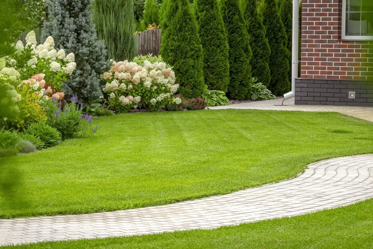 une bordure de jardin