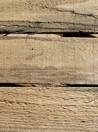 mur palette