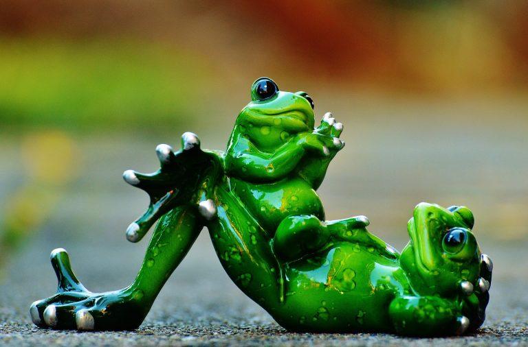 grenouilles resine